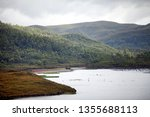 views of lake burbury  which is ... | Shutterstock . vector #1355688113