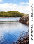 views of lake burbury  which is ... | Shutterstock . vector #1355688143