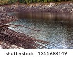 views of lake burbury  which is ... | Shutterstock . vector #1355688149