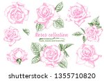 set of hand drawn sketch pink... | Shutterstock .eps vector #1355710820