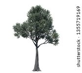 single tree isolated on white... | Shutterstock . vector #1355719169
