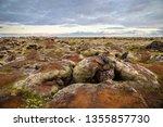 iceland   landscape full of moss | Shutterstock . vector #1355857730