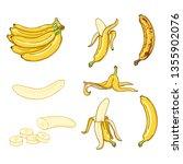 vector cartoon set of various...   Shutterstock .eps vector #1355902076