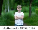 portrait of a boy on a... | Shutterstock . vector #1355915126