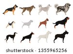 dogs set color flat icons for... | Shutterstock .eps vector #1355965256