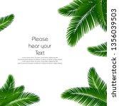 palm leaf background. palms... | Shutterstock .eps vector #1356039503