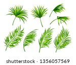 tropical leaves isolated on... | Shutterstock .eps vector #1356057569