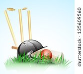 abstract cricket background... | Shutterstock .eps vector #135609560