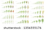 agricultural plant  growth set... | Shutterstock .eps vector #1356555176