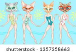 fashionable beach girls   cats... | Shutterstock . vector #1357358663