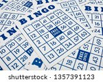 Bingo Game Cards. Bingo Number...
