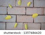 background for wall paper art.  | Shutterstock . vector #1357686620