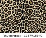 leopard pattern design....   Shutterstock .eps vector #1357915940