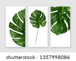 monstera leaf isolated on white ... | Shutterstock .eps vector #1357998086