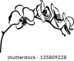 Orchid Flower Branch Vector...