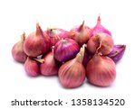 shallots are thai food and thai ... | Shutterstock . vector #1358134520
