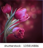 Bouquet Of Red Tulips Against A ...