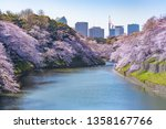 cherry blossoms in full bloom... | Shutterstock . vector #1358167766