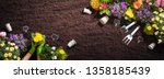 gardening tools on soil... | Shutterstock . vector #1358185439