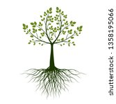 green tree with roots on white... | Shutterstock .eps vector #1358195066