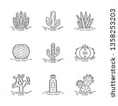 wild cactuses on ground linear... | Shutterstock .eps vector #1358253203