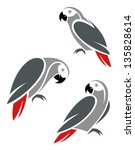 stylized african grey parrot | Shutterstock .eps vector #135828614