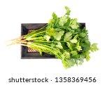 fresh coriander leaves isolated ... | Shutterstock . vector #1358369456