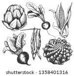 set vegetables radishes  beets  ... | Shutterstock .eps vector #1358401316