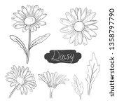 daisy flower vector ink... | Shutterstock .eps vector #1358797790
