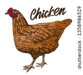 chicken hand drawn vector... | Shutterstock .eps vector #1358986529
