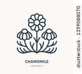 chamomile flat line icon.... | Shutterstock .eps vector #1359088070