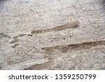 white marble patterned texture... | Shutterstock . vector #1359250799