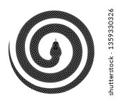 Snake curled into a spiral shape. Tattoo design. of a serpent coiled with head in the center. Vector illustration isolated on a white background.