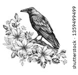 hand drawn crow and wildflowers ...   Shutterstock . vector #1359499499