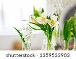 beautiful spring flowers in a... | Shutterstock . vector #1359533903