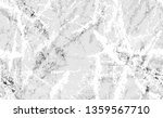 winter camouflage seamless... | Shutterstock .eps vector #1359567710