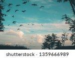 a flock of black big birds... | Shutterstock . vector #1359666989