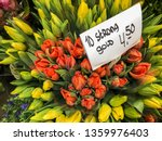 colorful tulips in a florist | Shutterstock . vector #1359976403