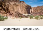 bedouin goes to a village in... | Shutterstock . vector #1360012223
