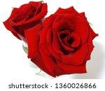 red rose flower | Shutterstock . vector #1360026866