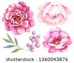 Watercolor Flowers. Setof...