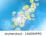 flying flower buds and... | Shutterstock . vector #136004990