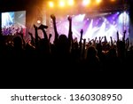 Stock photo hands of happy people crowd having fun at stage at summer live rock festival 1360308950