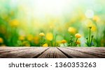 yellow spring flowers on wooden ... | Shutterstock . vector #1360353263