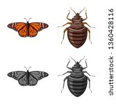 vector illustration of insect... | Shutterstock .eps vector #1360428116
