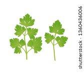 green parsley leaves. vector...   Shutterstock .eps vector #1360436006