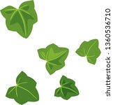 green leaves of pumpkin plant...   Shutterstock .eps vector #1360536710
