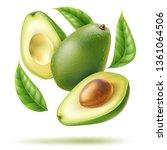 realistic whole avocado  half... | Shutterstock .eps vector #1361064506