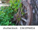 old cartwheel entwined with... | Shutterstock . vector #1361096816