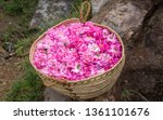 Stock photo basket full of rose petals on the ground at jebel al akhdar 1361101676